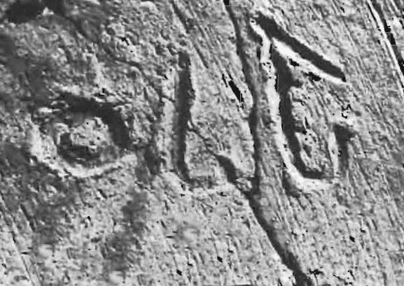 Tell el-Hesi Detail